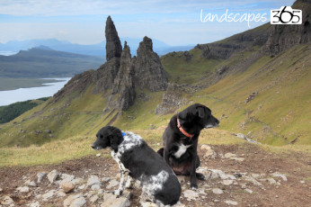 Old man of Storr 10